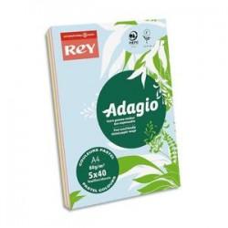 PAPYRUS Ramette 40 feuilles x 5 teintes papier couleur pastel & vive ADAGIO assortis pastel&vifs A4 80g