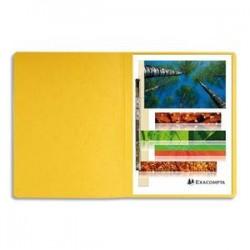 EXACOMPTA Chemise à lamelles et compresseur, capacité 350 feuilles perforées, carte lustrée coloris jaune