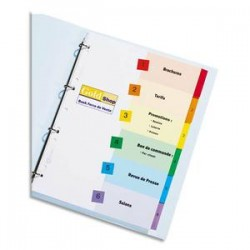 AVERY Jeu d'intercalaires numériques 6 positions pour imprimante Ready Index