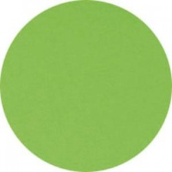 CLAIREFONTAINE Ramette de 250 feuilles papier couleur TROPHEE 160 grammes format A4 vert menthe 1025