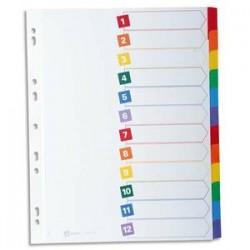 AVERY Intercalaires 12 touches . En carte blanche, onglets plastifiés de couleur. Maxi format.