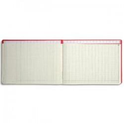 LE DAUPHIN Piqûre tracé comptable numéroté 27 x 37,5 cm 80 pages 15 colonnes avec tête paresseuse